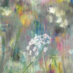 Hilary Reed. Cow parsley. Oil